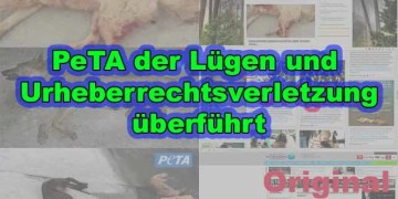 PeTA der Lügen und Urheberrechtsverletzung überführt