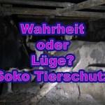 Friedrich Mülln von Soko Tierschutz lernt es nie