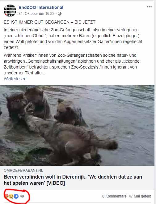 Frank Albrecht von EndZoo - Der Märchenerzähler (18) / Screenshot Facebook