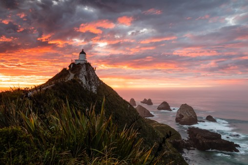 Sonnenaufgang am Nugget Point