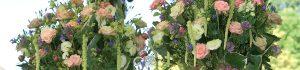 cropped-Header_27-01-17.jpg  %GerhardtBlumen