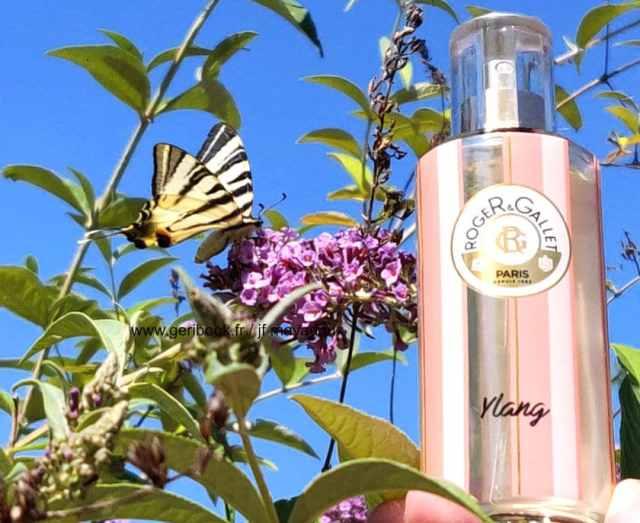 perfume Ylang - eau parfumée été 2019 - Roger Gallet édition limitée Ylang