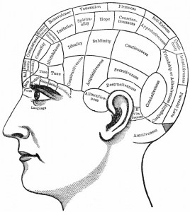 phrenology essay Find phrenology and phrenology fowler from a vast selection of books, comics and magazines get great deals on ebay.