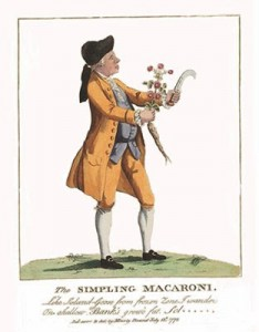 The Simpling Macaroni, Author's Collection
