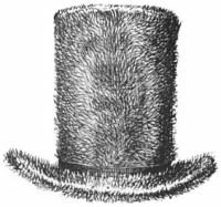 Rough Beaver with Unbound Brim, Public Domain