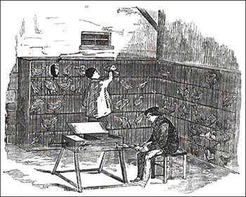 1860s Machine Used for Fattening Fowl, Public Domain