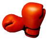 Boxing Gloves, Courtesy of Wikipedia