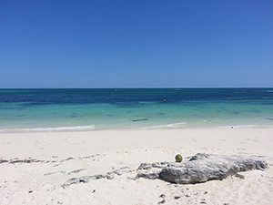 Captain Sands and his crew left 175 shipwreck survivors on a beach like this in the Bahamas, photo by Pietro