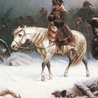 Napoleon's Army: The Insects That Defeated It