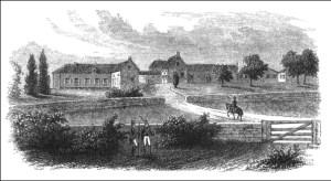 Betsy Balcombe - Longwood House