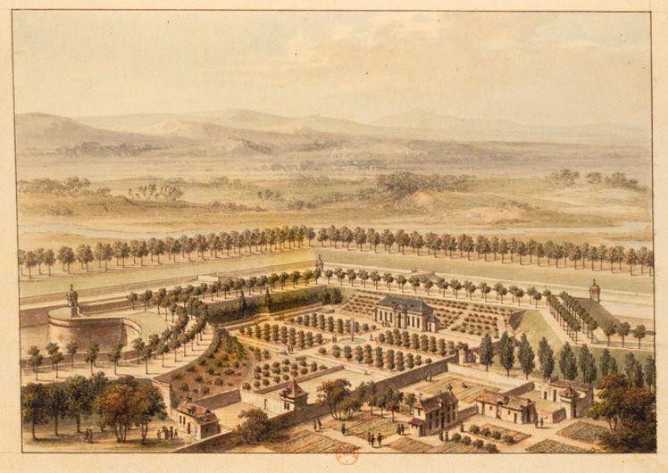 Mid-nineteenth Century Jardin des Plantes