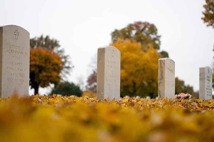 Fall colors at Jefferson Barracks © 2009 Max Gersh