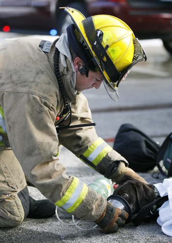 firefighter giving dog oxygen