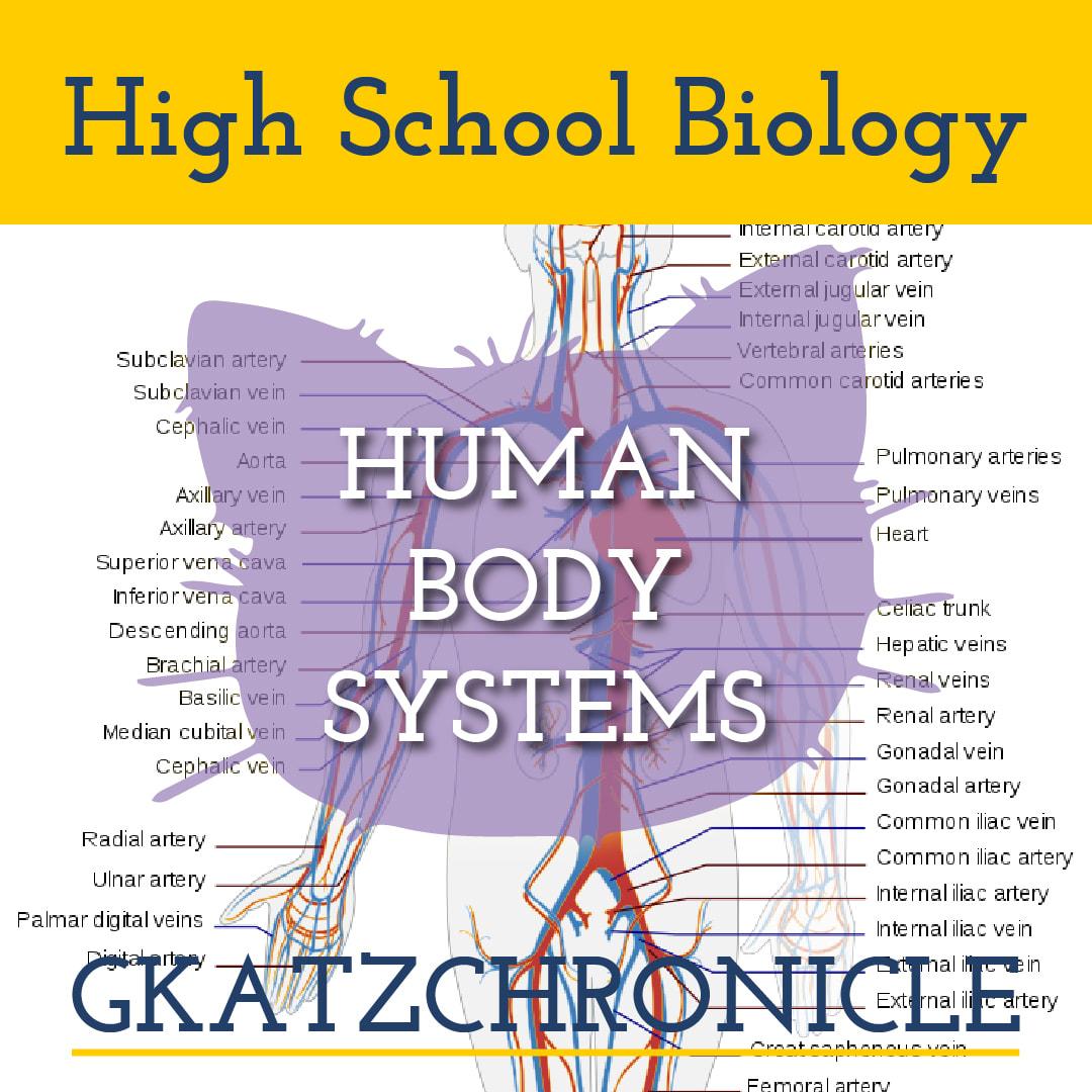 Human Body Systems Unit Test