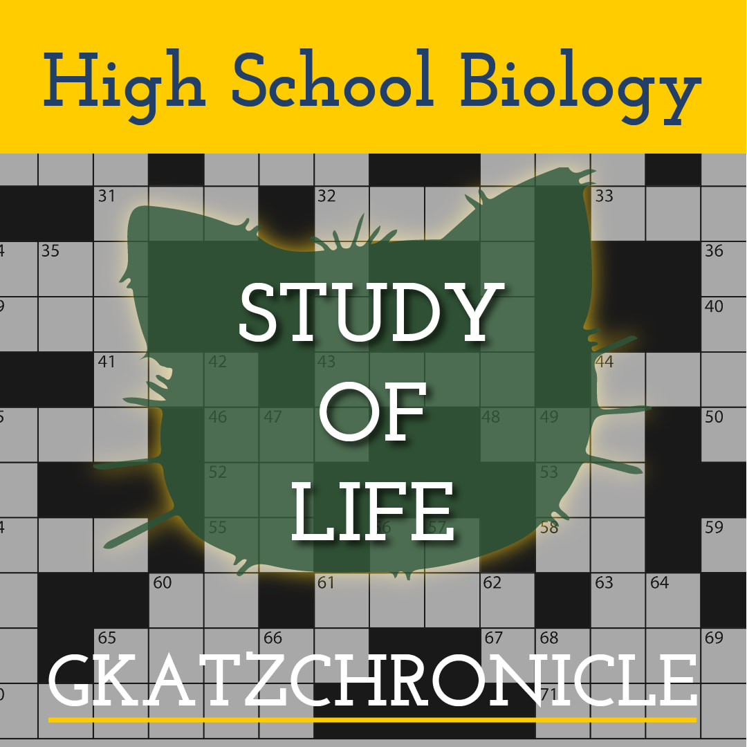 Study Of Life Review Crossword