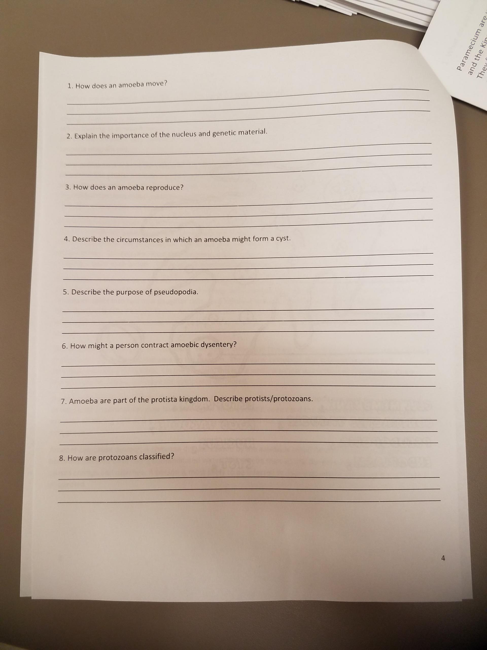 Characteristics Of Life Protists Lab