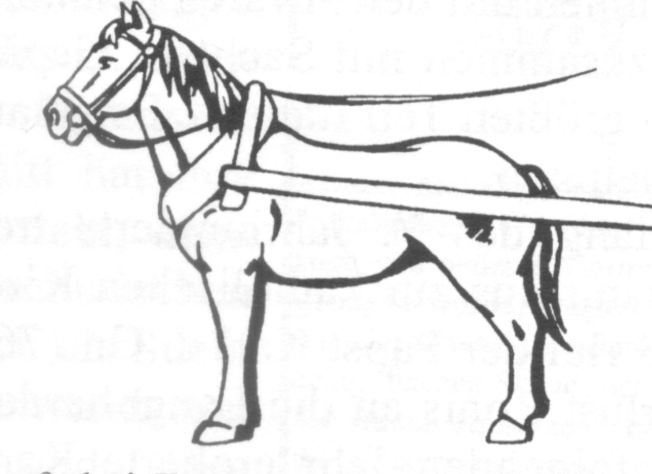 KAMPF UM ROM Historical Glossary bertold01.doc