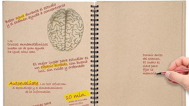 Los trucos del cerebro, Psicoterapia Gestalt Valencia - Clotilde Sarrió