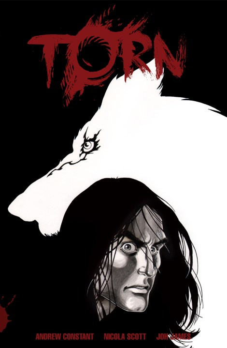 Torn - Cover Art