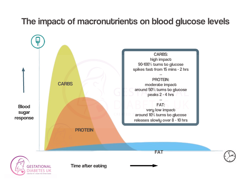 Macronutrients impact on blood glucose