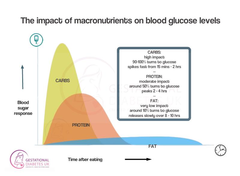 Macronutrients impact on blood glucose