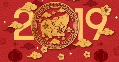 Chinese New Year 2019 pig