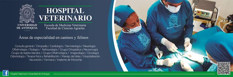 servicios-hospital-veterinario-universidad-de-antioquia