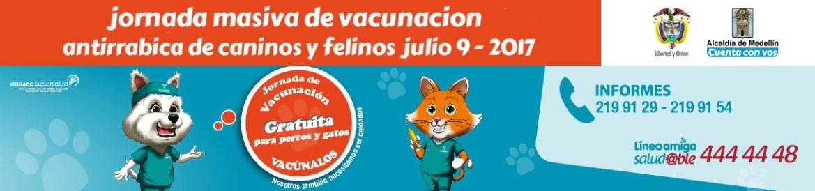 jornada-de-vacunacion-gratuita-para-perros-y-gatos-9-de-julio-2017