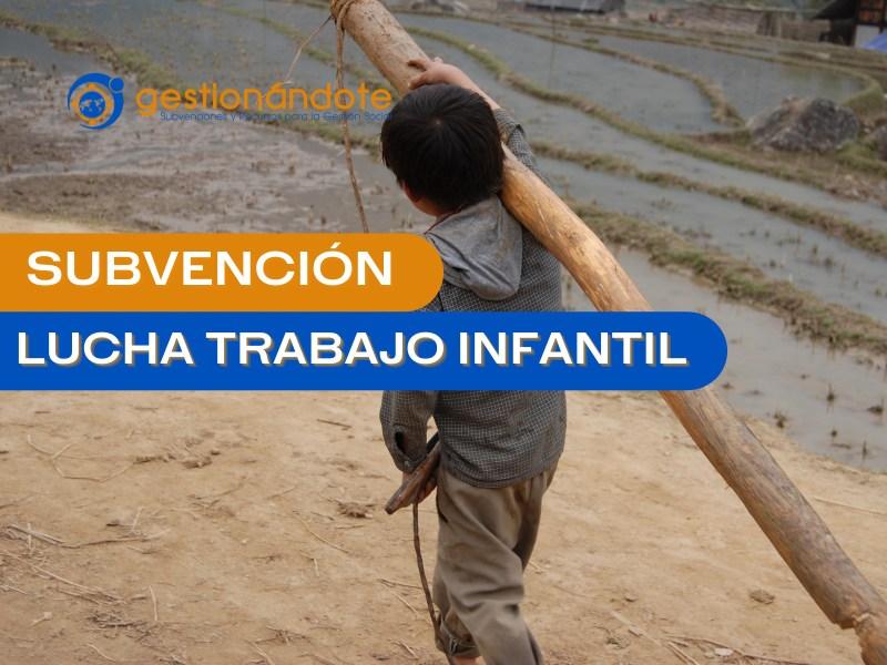 subvencion lucha trabajo infantil