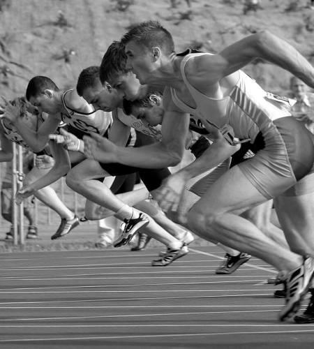 sprint scrum
