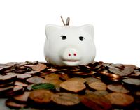 Porcellino sopra i risparmi