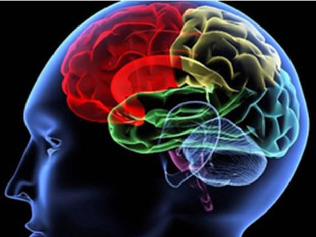 neuropsicologia-cognitiva