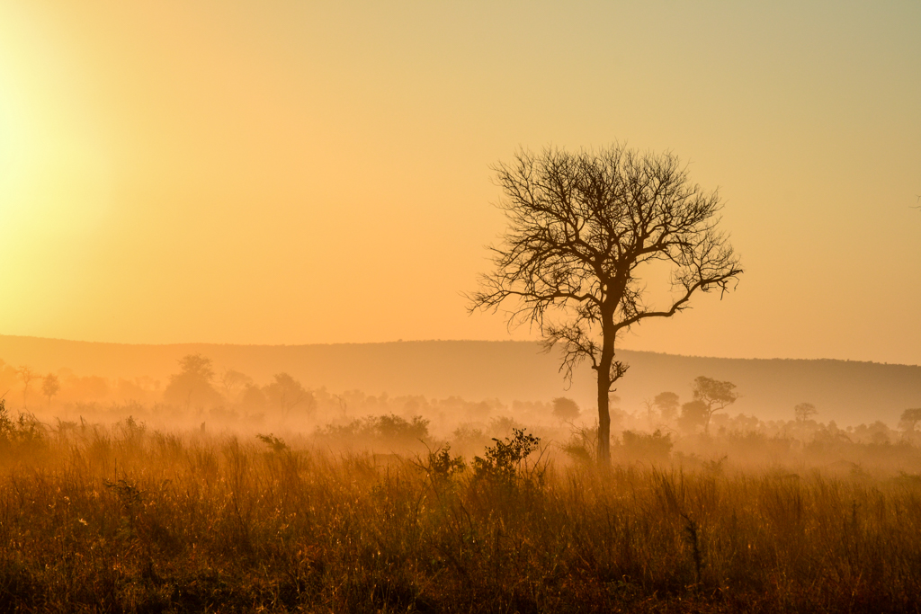 The best Kruger campsites north to south  Getaway Magazine