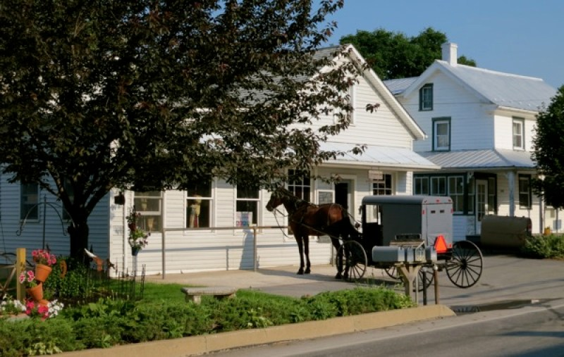 Horse and buggy outside of harness shop, Intercourse, PA