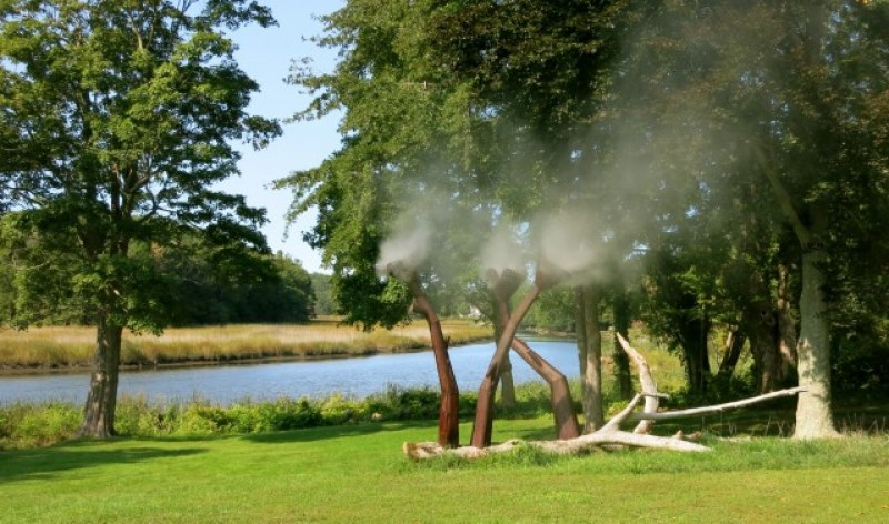 "Misting steel ""flowers"" by river at Florence Griswold Museum, Old Lyme CT"