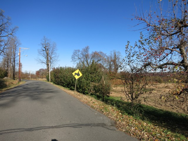 Typical Hudson Valley Road in Farm County NY