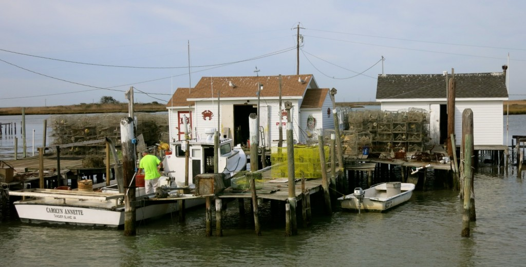 Waterman, Tangier Island VA