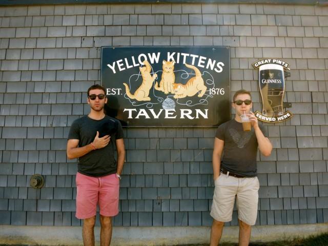 Yellow Kittens