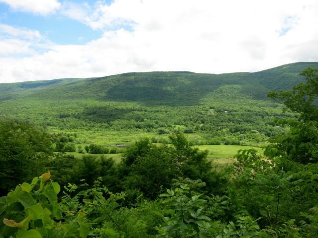 Views from Hildene