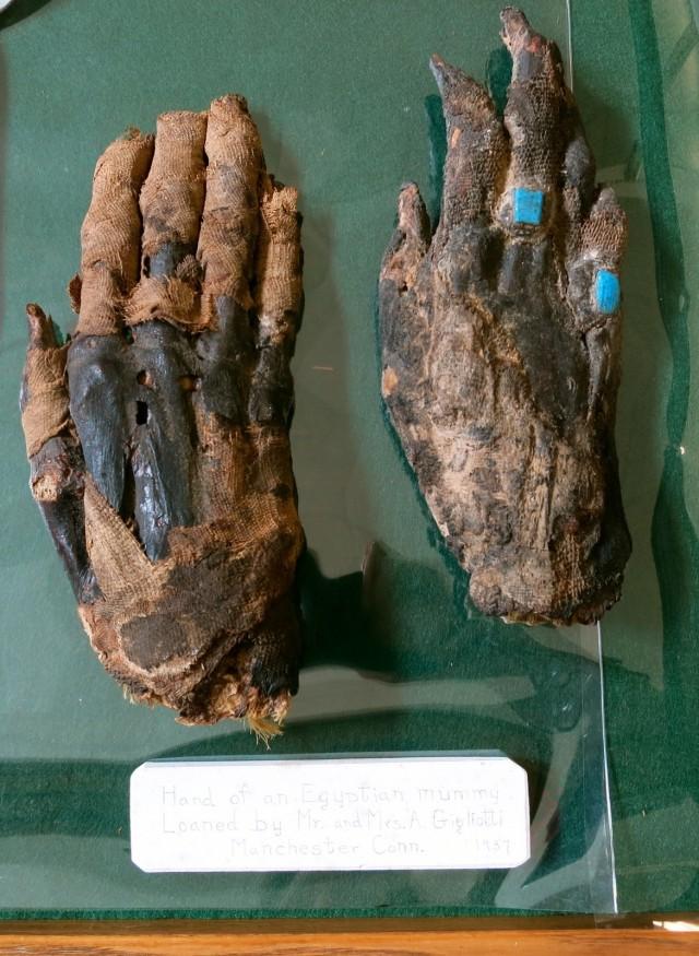Mummy Hands, Libby Museum, Wolfeboro NH