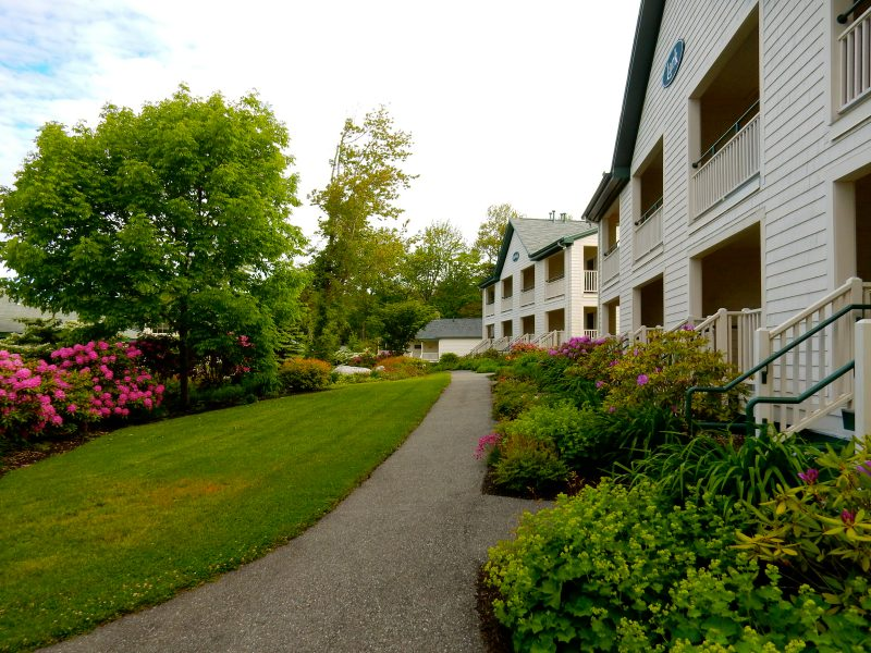 Spruce Point Inn grounds in June