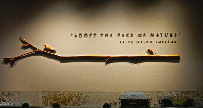 adopt-the-pace-of-nature-emerson
