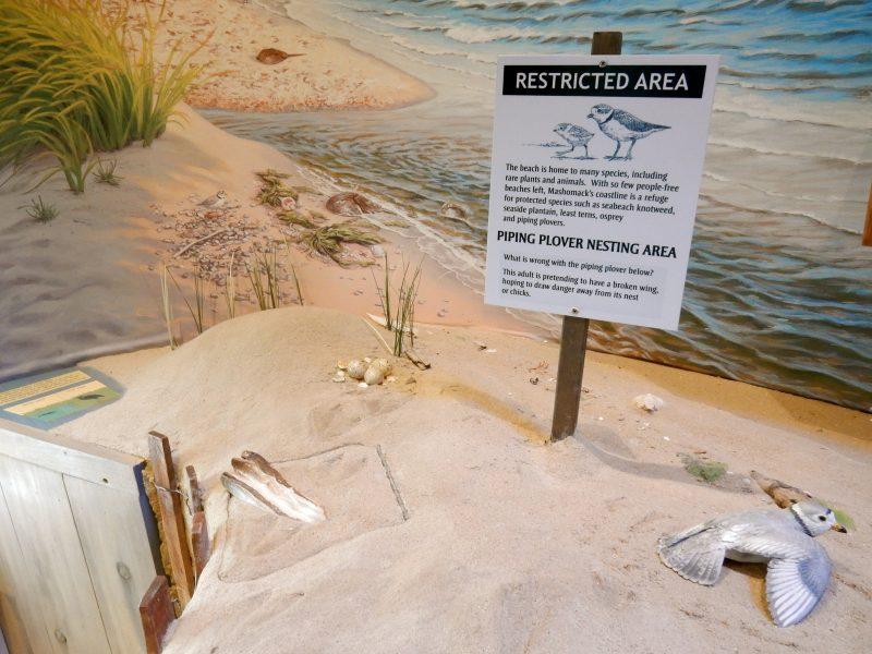 visitors-center-mashomack-preserve-shelter-island-ny