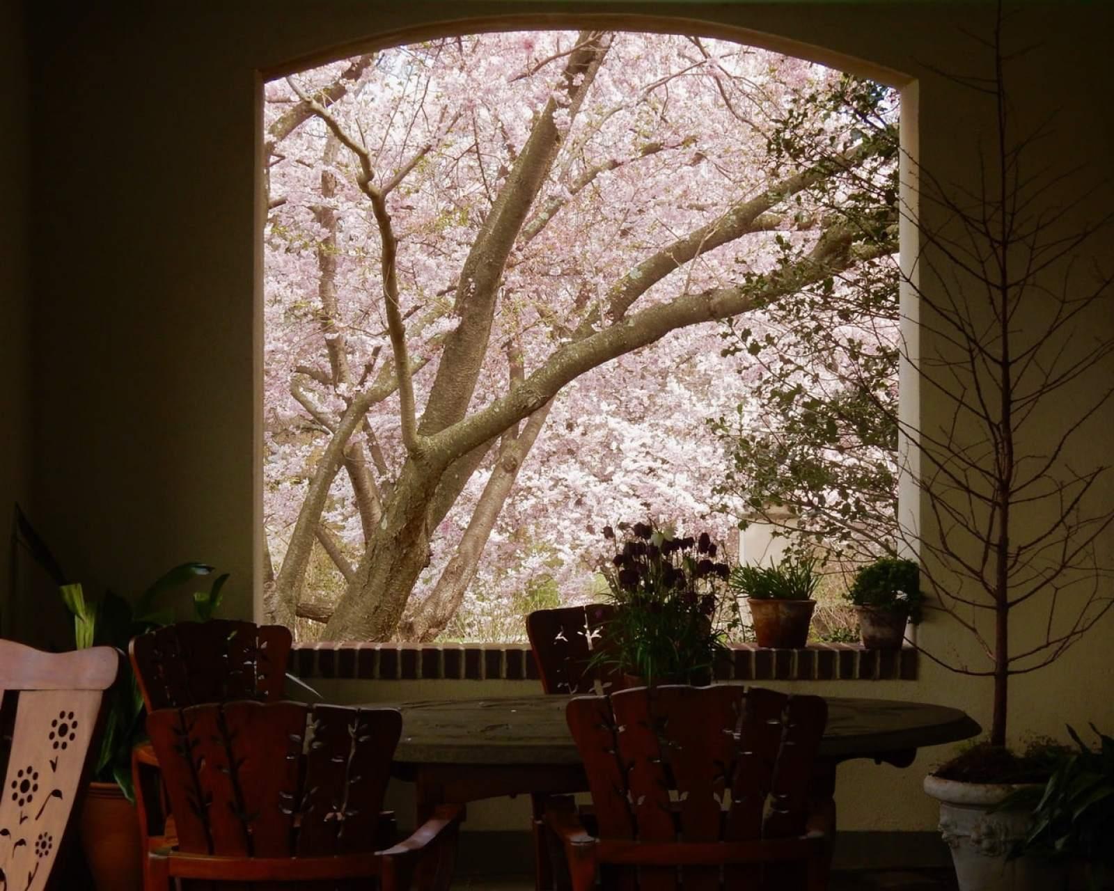 Overlook Terrace of Main Rosengarten Home Chanticleer Garden Wayne PA