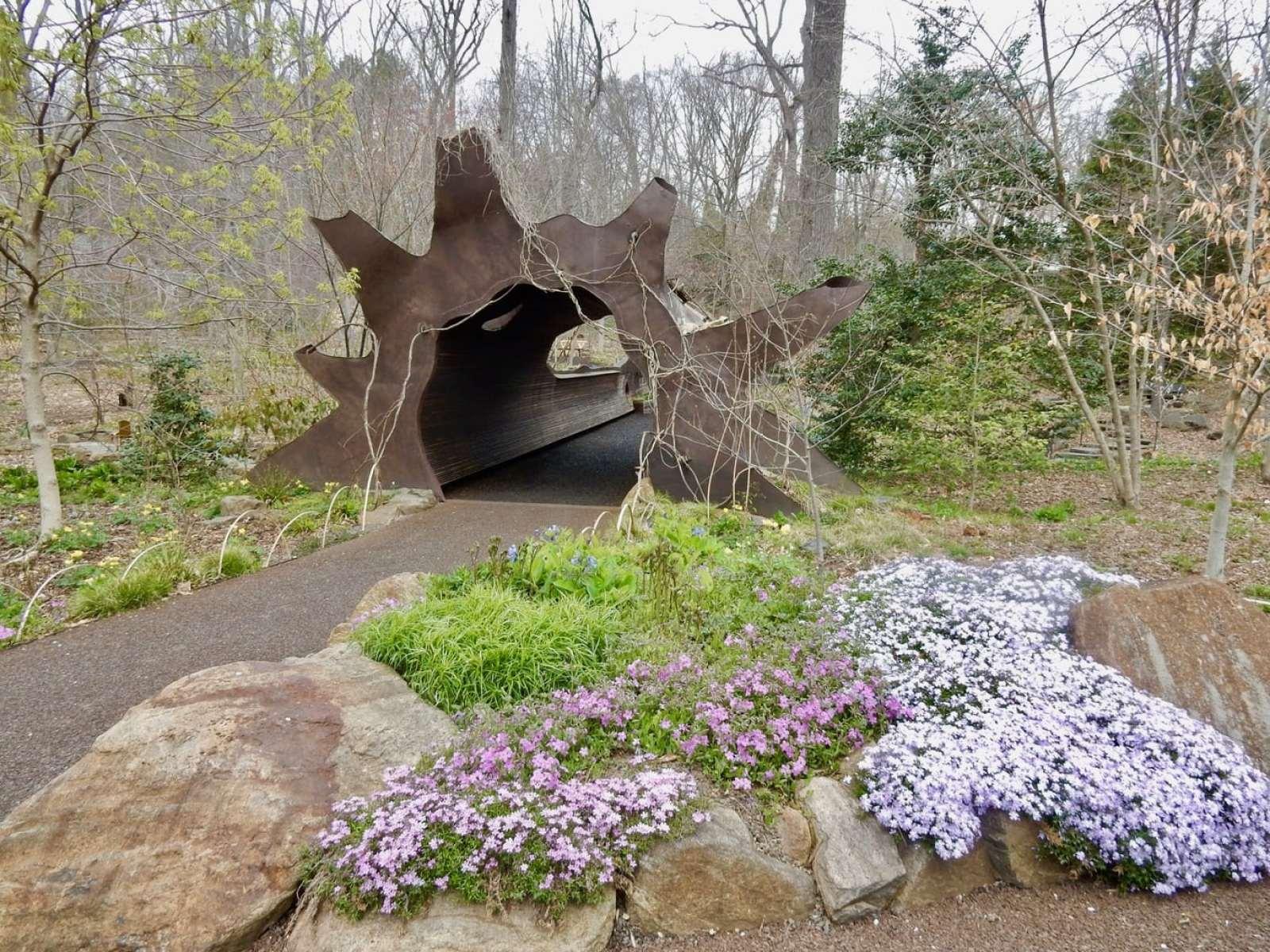 Fallen Tree Pedestrian Bridge Chanticleer Garden Wayne PA