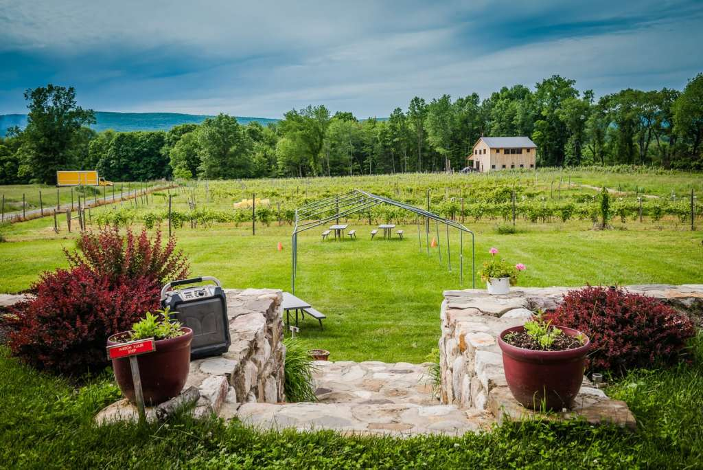 Stone steps lead to Christopher Jacobs vineyard.