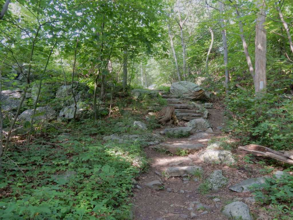 Rocky trail on the AT in New Jersey leads to Sunrise Mountain