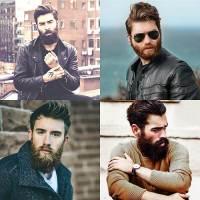 Beard Style Men