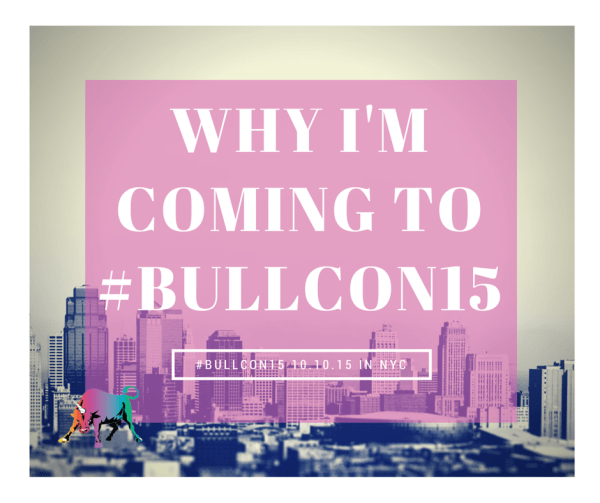 what i learned from the #Bullcon15 chat
