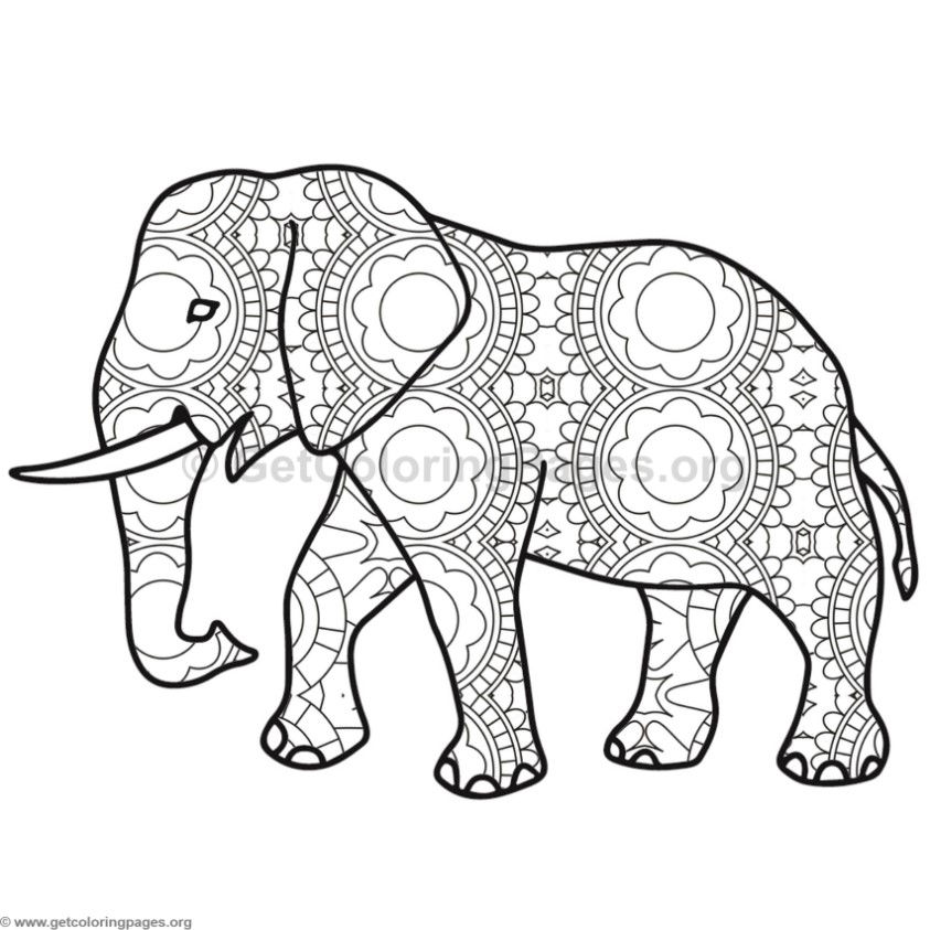 Elephant Coloring Pages #3